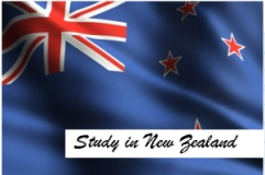 Study Cooking in New Zealand