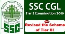 SSC CGL 2016 Tier III Descriptive Paper