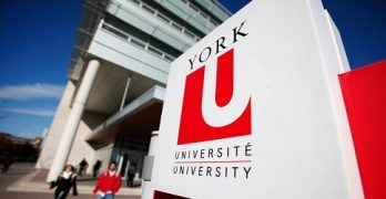 York University Certificate Program